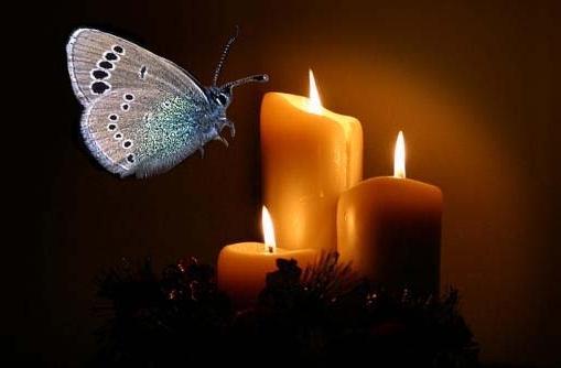 عکس شمع متحرک